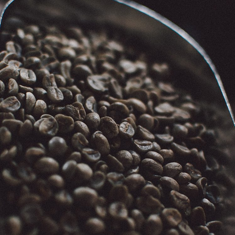 Specialty green coffee